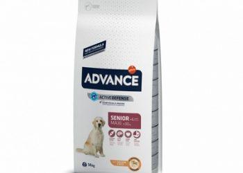 Advance Для взрослых собак крупных пород старше 6 лет (Maxi Senior)