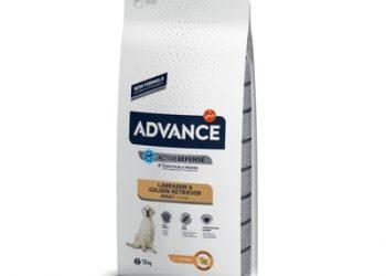 Advance Для золотистых ретриверов (лабрадоров) (Labrador Retriever)