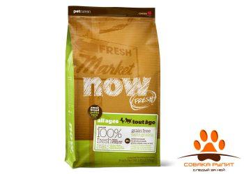 Корм NOW Natural holistic беззерновой для малых пород всех возрастов с индейкой, уткой и овощами
