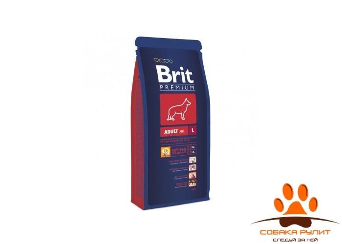 BRIT Premium «Adult L»