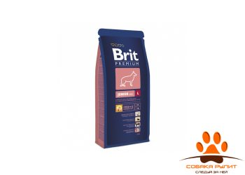 BRIT Premium «Junior L»