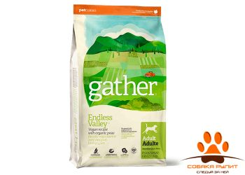 GATHER Endless Valley Vegan DF