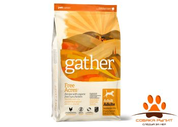 GATHER Free Acres Chicken DF