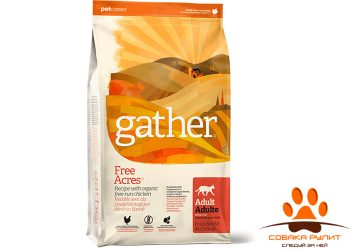 GATHER Free Acres Chicken CF