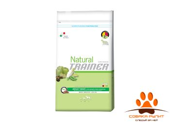 Trainer Natural Maxi Adult Beef, Rice and Ginseng