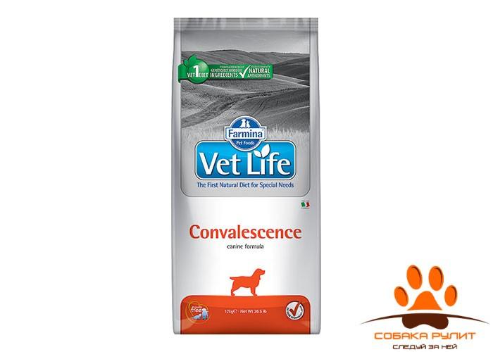 Farmina Vet Life Dog Convalescence 2 кг