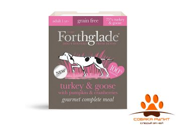 FORTHGLADE Gourmet Turkey & Goose Natural Wet Dog Food with pumpkin & cranberries (395g)