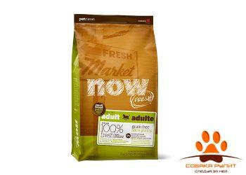 Корм NOW Natural holistic беззерновой для взрослых собак малых пород, с индейкой, уткой и овощами