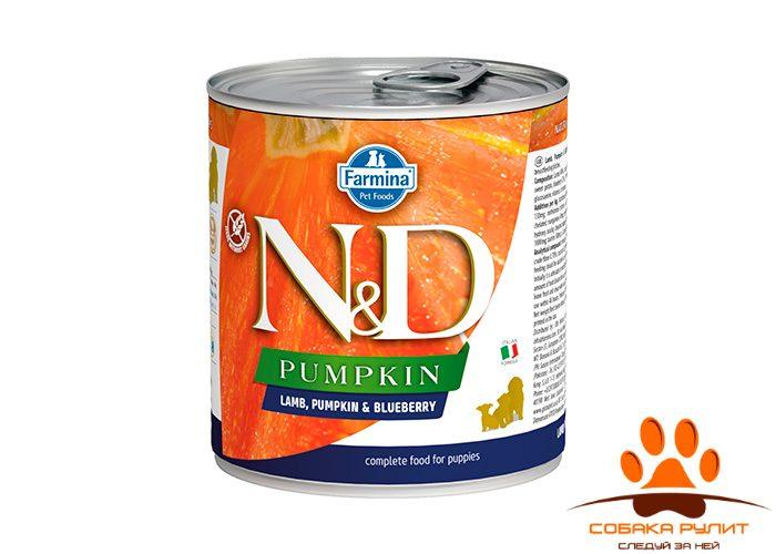 Farmina N&D Dog Pumpkin Wet Lamb & Blueberry Puppy
