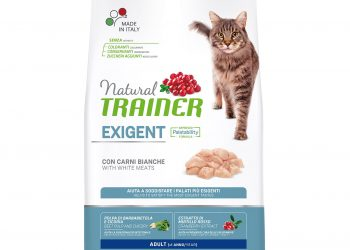 Trainer Natural Exigent Cat — with fresh White Meats