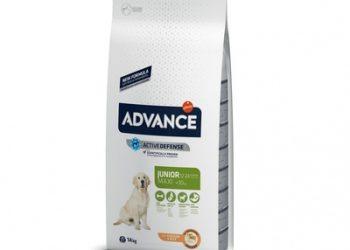 Корм Advance для щенков крупных пород 12-24 мес, Maxi Junior