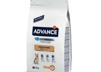 Advance Для йоркширских  терьеров (Yorkshire Terrier)