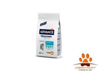 Advance Для котят (с 2 до 12 месяцев) (Baby Protect Kitten)