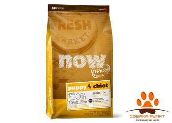 Корм NOW Natural holistic беззерновой для щенков с индейкой, уткой и овощами