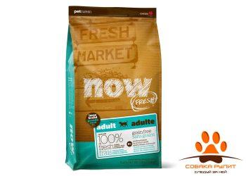 Корм NOW Natural holistic беззерновой для взрослых собак крупных пород с индейкой, уткой и овощами