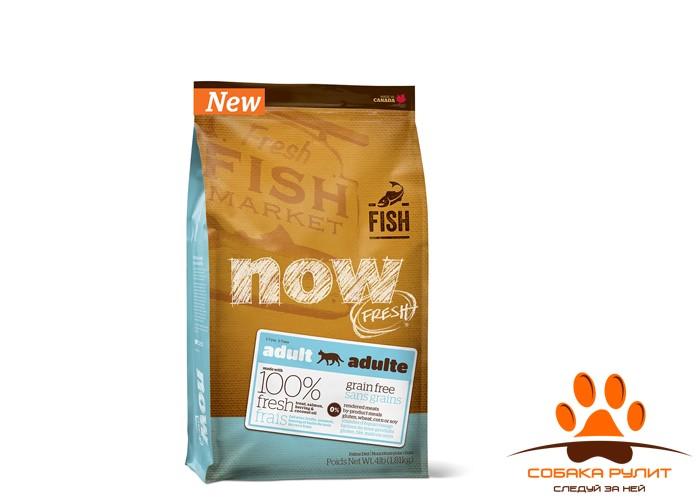 Корм NOW Natural holistic беззерновой для взрослых кошек с форелью и лососем для чувствительного пищеварения