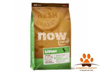 Корм NOW Natural holistic беззерновой для котят с индейкой, уткой и овощами
