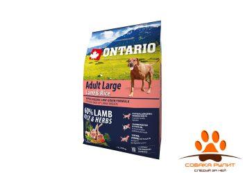 Ontario Для собак крупных пород с ягненком, индейкой и рисом (Ontario Adult Large Lamb, Turkey & Rice