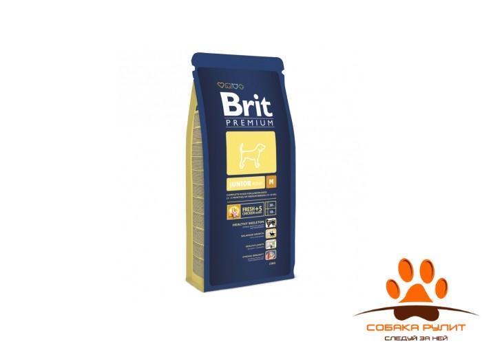 BRIT Premium «Junior M»