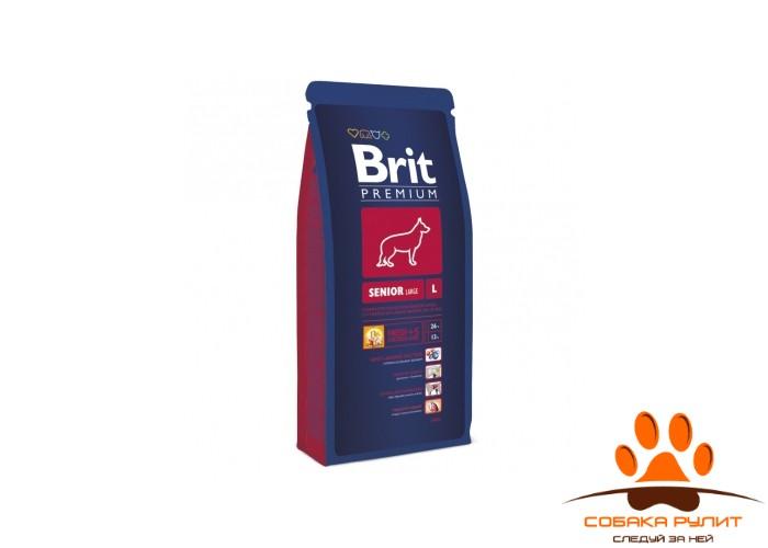 BRIT Premium «Senior L»