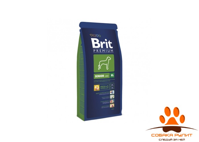 BRIT Premium «Senior XL»