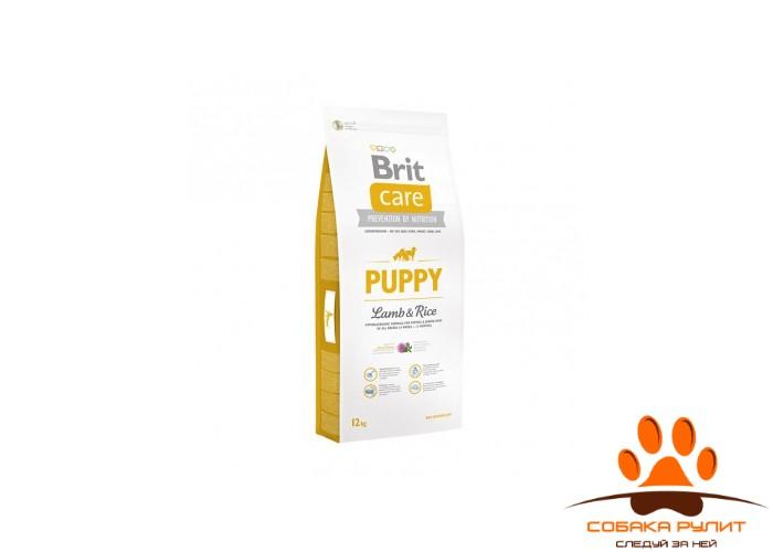 Brit Care «Puppy Lamb & Rice»