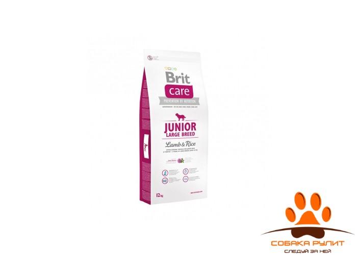 Brit Care «Junior Large Breed Lamb & Rice»
