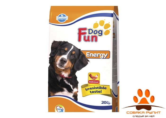 Farmina Fun Dog Energy 20 кг