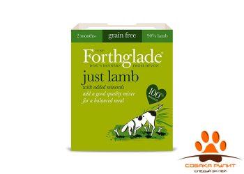 FORTHGLADE Just Lamb Grain Free (Мясо ягненка. Беззерновое пате для взрослых собак 395 гр.)