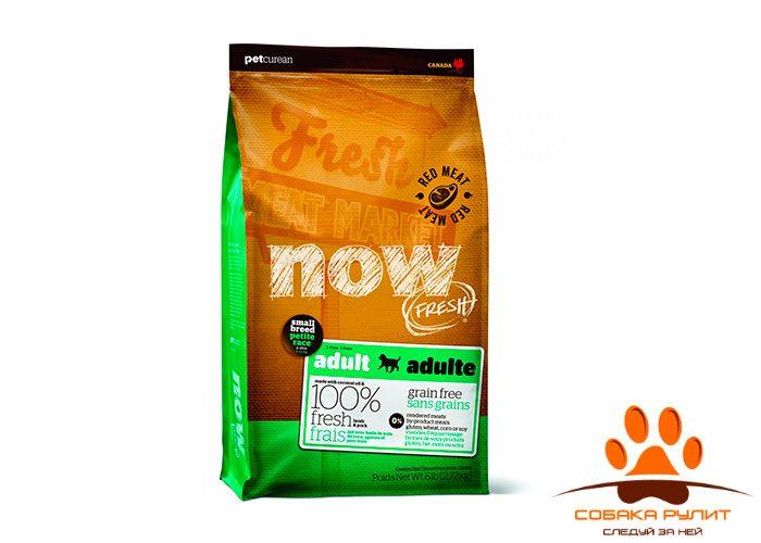 Корм NOW Natural holistic беззерновой для взрослых собак малых пород, со свежим ягненком и овощами