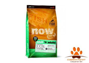 Корм NOW Natural holistic беззерновой для взрослых собак малых пород с форелью, лососем и овощами