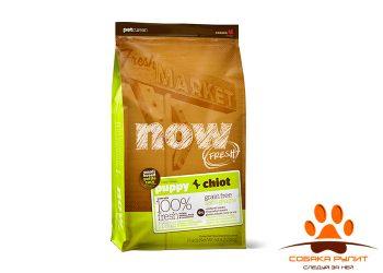 Корм NOW Natural holistic беззерновой для щенков малых пород, с индейкой, уткой и овощами 2,72 кг