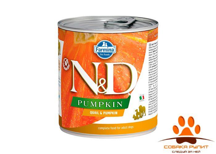 Farmina N&D Dog Pumpkin Wet Quail