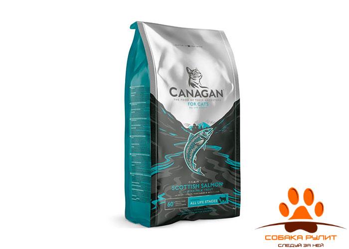 CANAGAN Grain Free, Scottish Salmon, корм  для кошек всех возрастов и котят, Шотландский лосось