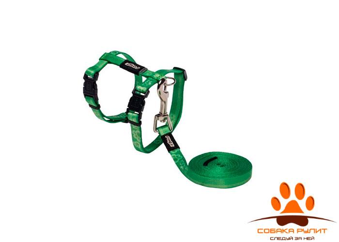 Rogz комплект: шлейка + поводок для кошек
