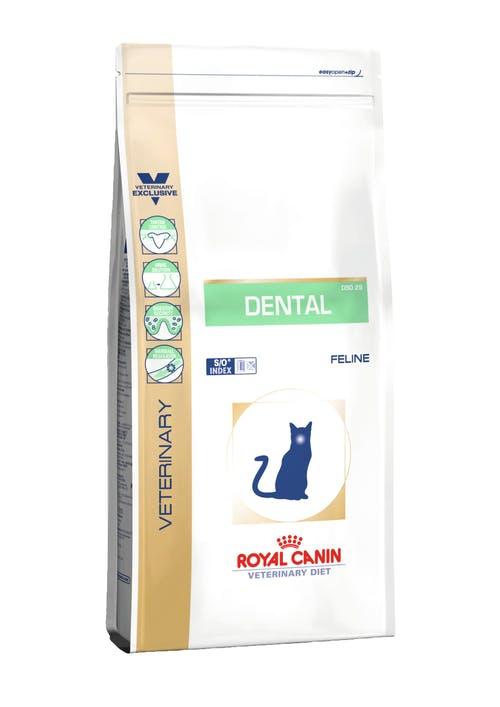 Dental DSO 29 Feline