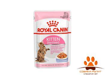 Kitten Sterilised (в желе)