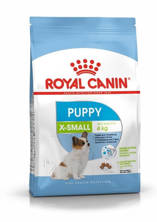 X-Small Puppy