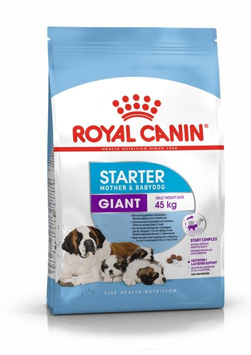 Giant Starter Mother & Babydog