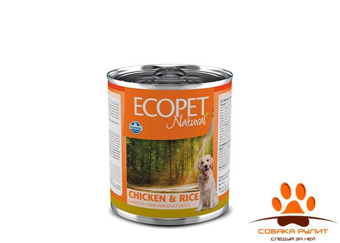 Ecopet Natural Dog Chicken & Rice