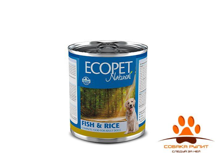 Ecopet Natural Dog Fish & Rice